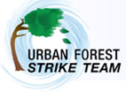 USFS-Strike-Team