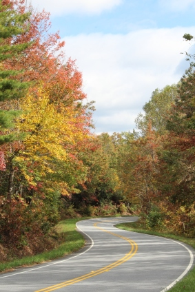 Maples and Sourwoods on Richard Russell Scenic Hwy 10-25-17
