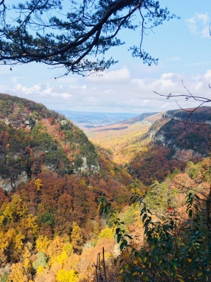 Cloudland Canyon 11-06-17