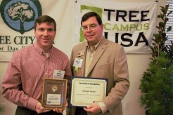 Georgia Power Tree Line USA 2018 Atlanta Mark Wachter