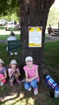 The Winterville Tree Tour